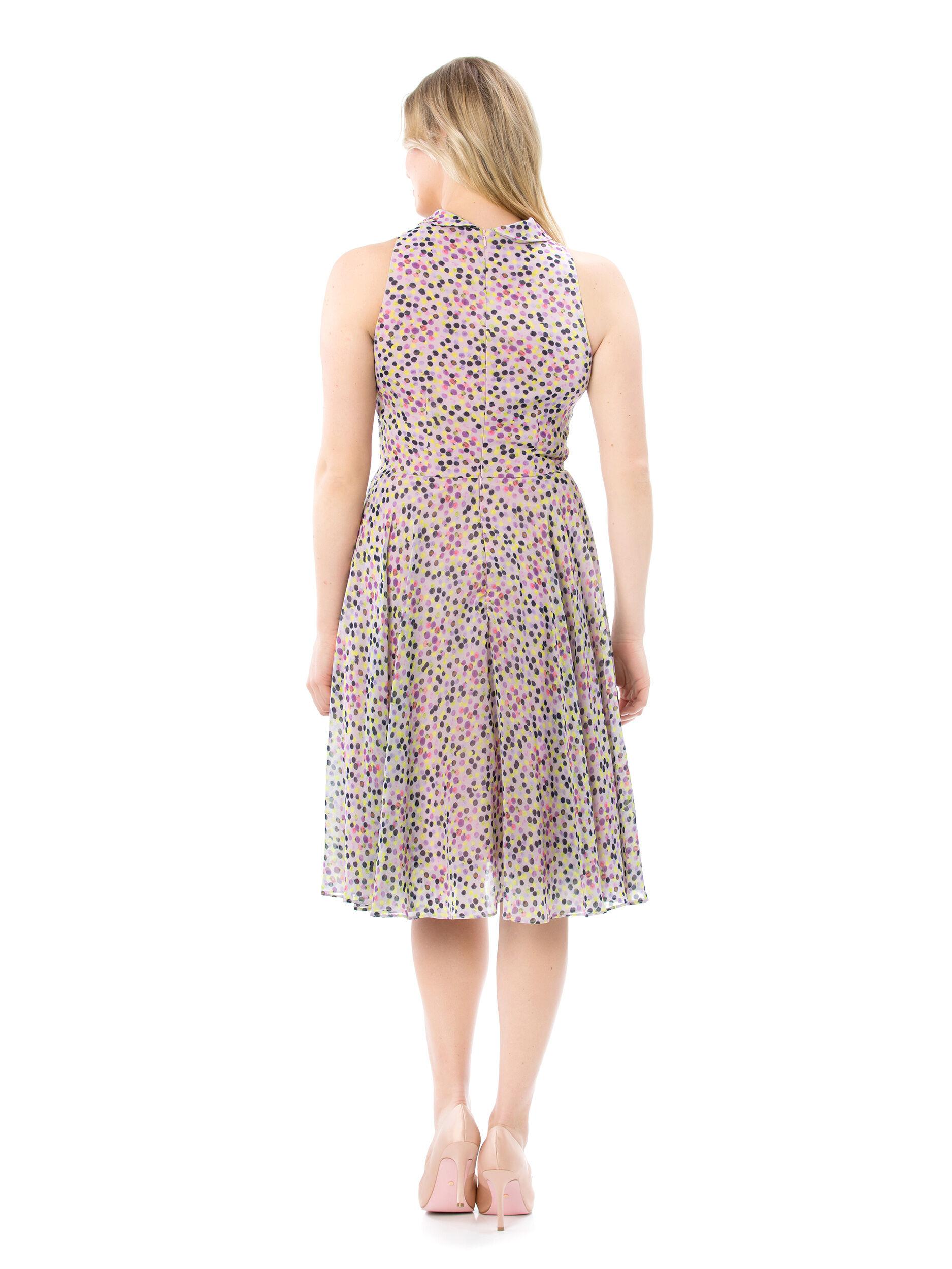 Carousel Spot Dress