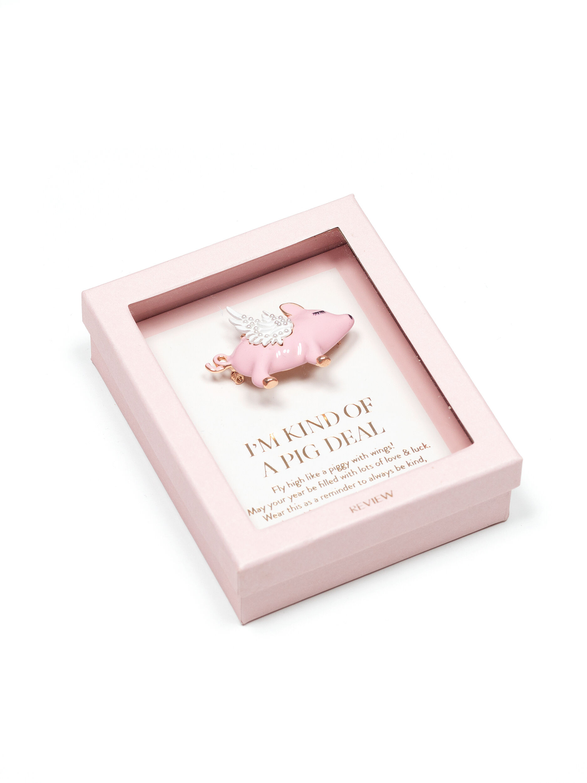 Pigs Can Fly Brooch